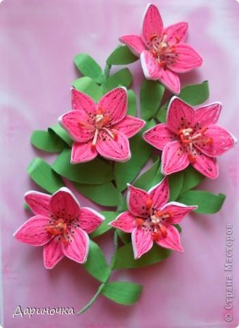 Розовые лилии (квиллинг) фото 1