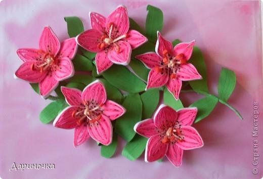Розовые лилии (квиллинг) фото 4
