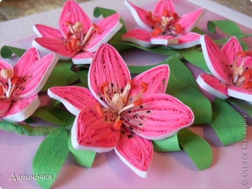 Розовые лилии (квиллинг) фото 3
