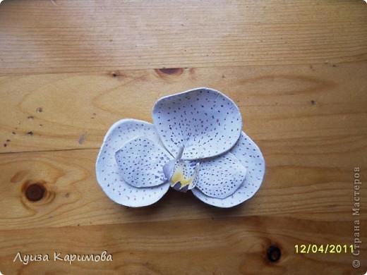 Мой цветочек фото 2