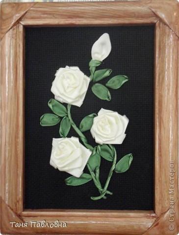 Розы коллеге фото 7