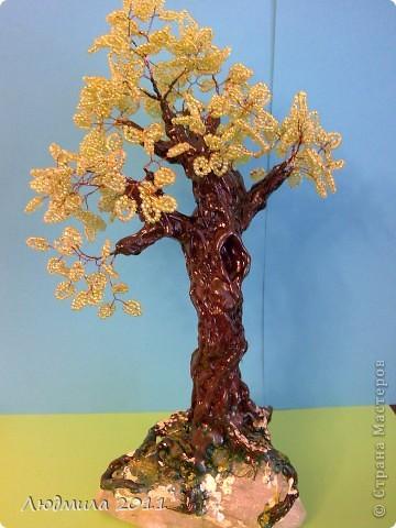 """Вот такое дерево """"выросло"""" в моей коллекции  фото 1"""