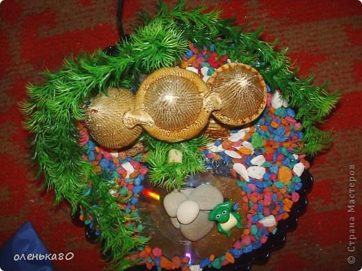 нам понадобится камешки для аквариума,емкость в данном случае у меня это большая салатница,искусственные водоросли, насос(который вставляют в аквариум),любые украшения,небольшая резиновая трубочка,подходящая по размеру для отверстия в насосе,круг из оргстекла.  фото 10
