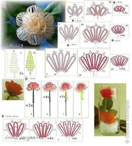 Мои любимые цветы!!! фото 4