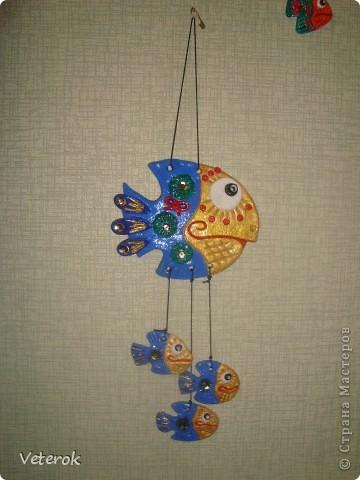 Мои рыбки фото 2