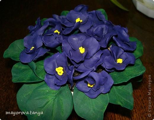 Вот такие непонятные цветы у меня получились.... Задумывались как примула, но что вышло, то вышло)))) Выкинуть вроде жалко... фото 8