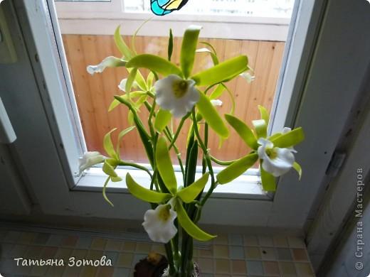 Орхидея - ваниль. Сделана композиция из глины модерн. Пять веток: три с цветами и две с бутончиками.  фото 4
