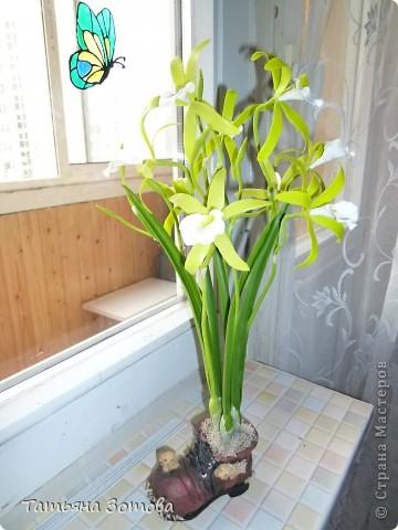 Орхидея - ваниль. Сделана композиция из глины модерн. Пять веток: три с цветами и две с бутончиками.  фото 2