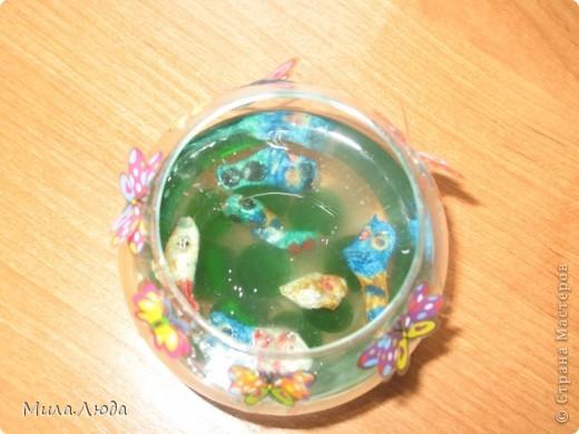 Вот такой аквариум появился у нас дома совершенно случайно. Это моя любимая поделка, так что я ее никому не дарю)) фото 4