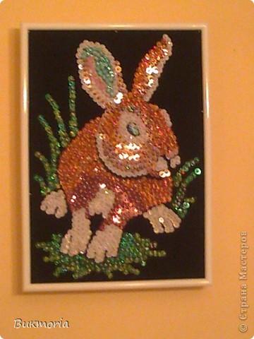 Этого зайца я взяла здесь: http://stranamasterov.ru/node/78992 . Этот заяц мне сразу очень понравился! И... я сразу же полетела в магазин за пайетками, бархатной бумагой, гвОздиками... фото 1