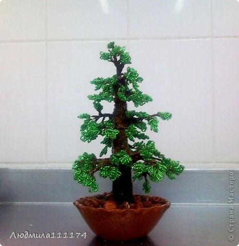 Вот и ещё одно дерево выросло у меня, очень нравится процесс и подарок получился симпатичный.