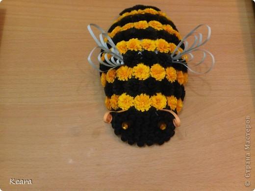 Весна в самом расцвете, Пасха совсем скоро, появились цветы а с ними такие вот пчелки :) фото 2