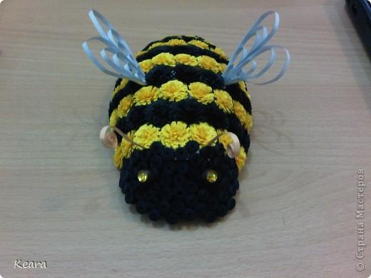 Весна в самом расцвете, Пасха совсем скоро, появились цветы а с ними такие вот пчелки :) фото 1