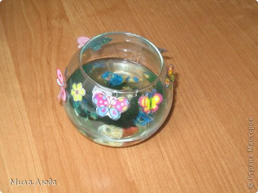 Вот такой аквариум появился у нас дома совершенно случайно. Это моя любимая поделка, так что я ее никому не дарю)) фото 1