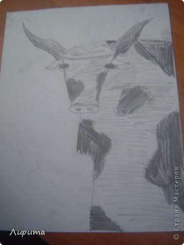 """Буффало- это """"Техасские буйволы"""". Также это является символом Техаса.  Сестру в школе научили, как нарисовать такого барана, а я спешу поделится с вами: будет мой первый МК.  фото 8"""