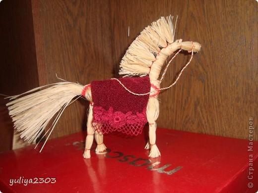 """Символ добра и счастья и Солнца. """"Быть на коне"""", означает успех и удачу. Поселите «Солнечного коня» у дома, и он принесет Вам счастье и удачу."""