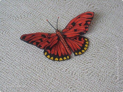 Моя вторая бабочка в технике квиллинг. Ещё ничего не приклеено, просто наброски.  Захотелось скорее похвастать, думаю многим  знакомо это чувство. фото 5