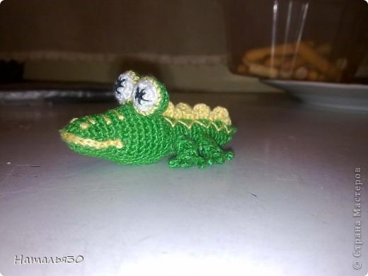 Крокодильчик миниатюрный. фото 2