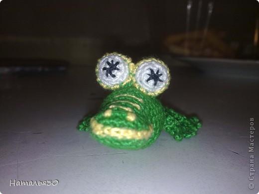 Крокодильчик миниатюрный. фото 3