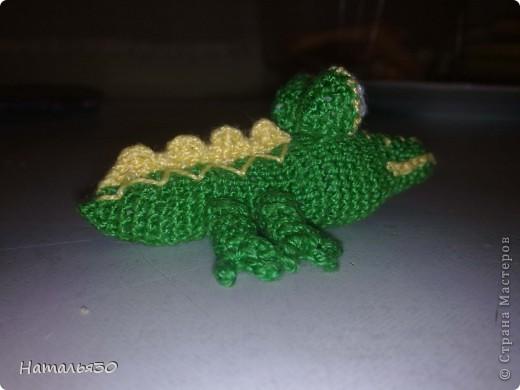 Крокодильчик миниатюрный. фото 4