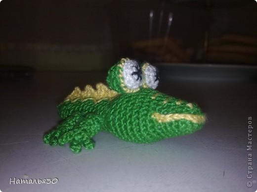 Крокодильчик миниатюрный. фото 5