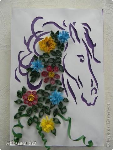 Наша лошадка