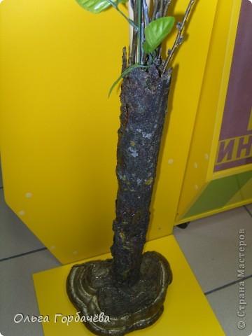 Сама ваза из тубы картонной обклеена корой с разноцветным лишайником.Подставка-основание из гриба-трутовика,частично обклеенного корой и покрытой бронзой.Кора на вазе покрыта лаком бесцветным.Тубу в основании заливала гипсом. фото 1