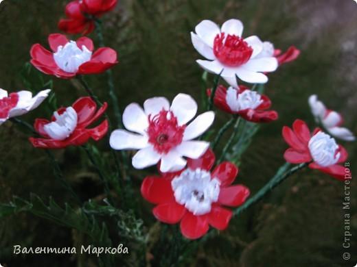 """Такие цветы были подарены нашей """"невесте""""     http://stranamasterov.ru/node/182082 .    Если вам понравился букетик, давайте вместе попробуем сотворить такие же цветы Приступим? фото 23"""