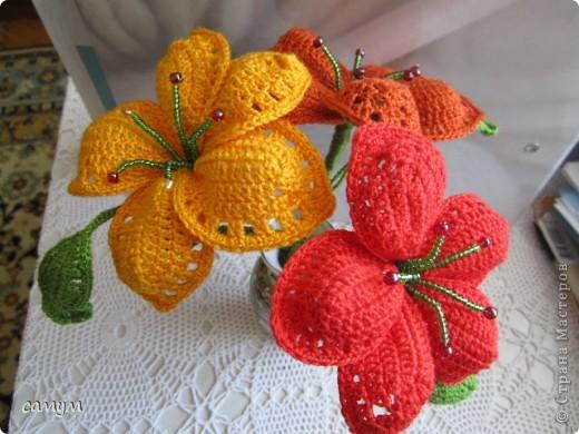 экзотические цветы фото 1