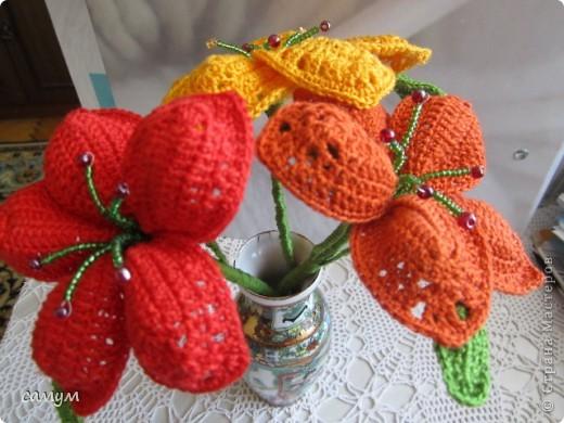 экзотические цветы фото 3