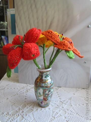 экзотические цветы фото 2