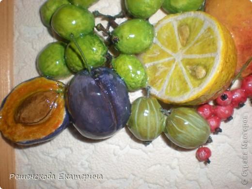 Всем доброго времени суток. Представляю вашему вниманию очередную свою работу - на этот раз это фрукты и ягоды. Здесь и персик с яблочком, и виноград, и слива с вишней,  смородинка с клубникой, абрикосы и черника с малинкой. В данной работе использовала настоящие веточки винограда и смородины ( без ягод!),косточки от лимона и сливы. Делала оттиск на тесте настоящего виноградного листа.  О сходстве с оригиналами судить вам. фото 10