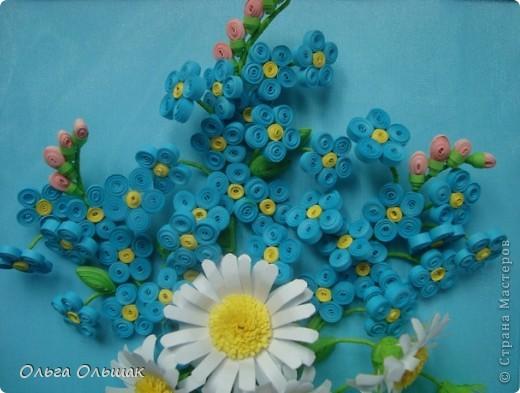 На улице весна! Появились первые цветы мать-и- мачеха,а я вырастила незабудки. фото 3