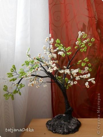 бисерные деревца фото 17