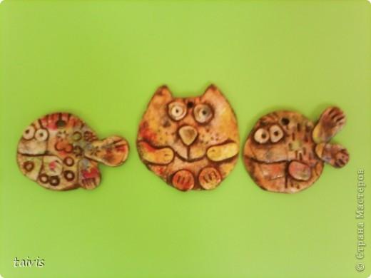 Коты,мыши,рыбы... фото 7