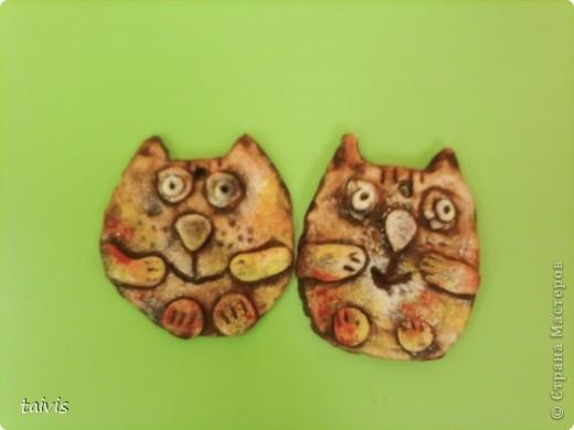 Коты,мыши,рыбы... фото 10