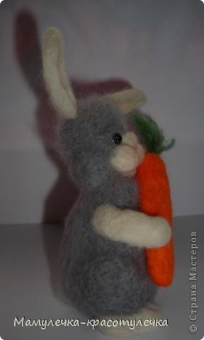 Я - новый зайка! Люблю морковку! Зовут меня Лапочка. фото 3