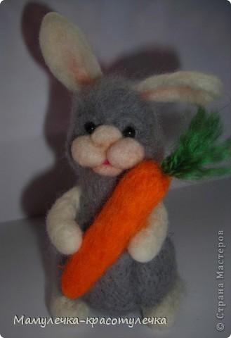 Я - новый зайка! Люблю морковку! Зовут меня Лапочка. фото 1