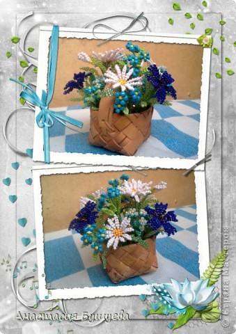 Полевые цветочки)