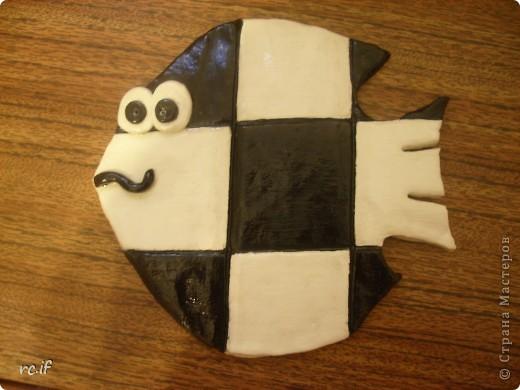 Рыбка-шахматка фото 4