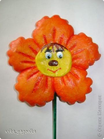 Веселые крошечки для цветочков! фото 3