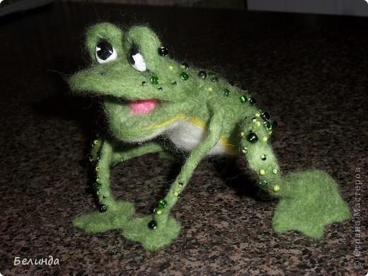 Лягушечка,моя. фото 1