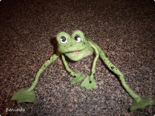 Лягушечка,моя. фото 2