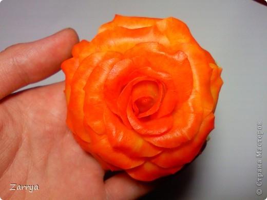 Первый опыт в покраске розы