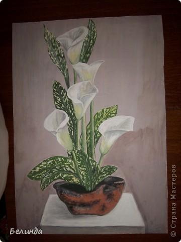 Рисунок акварельными карандашами. Названия цветка не помню. фото 2