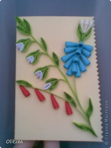 Card фото 12