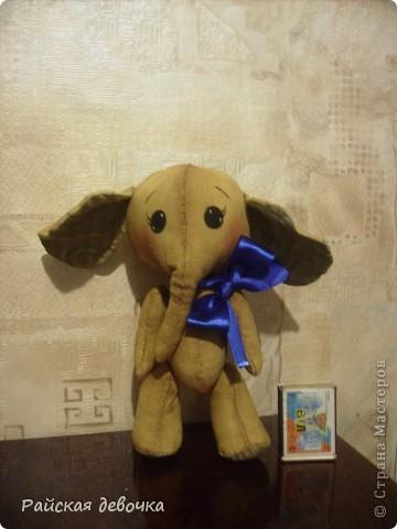 Моя Слоняша  фото 4