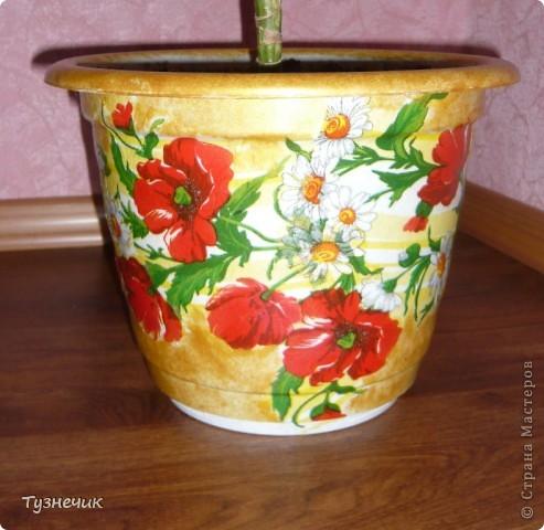 Вот такой получился горшочек для маминой пальмы)))) фото 3