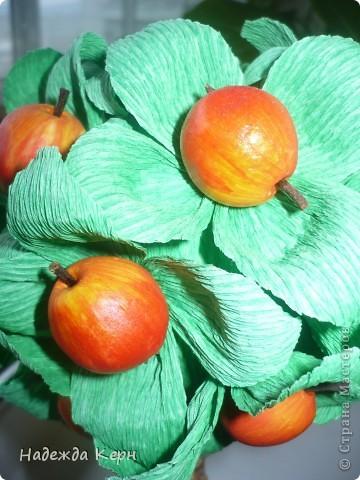 Яблочки поспели)))) фото 3