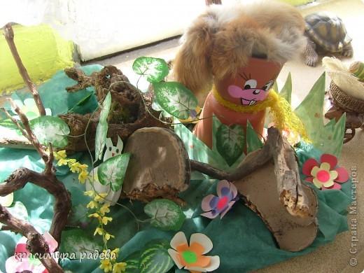 В Детската градина ,в която работя подготвяме украса по повод празници, тържества и за всички сезони. Предоставям на вашето внимание Великденската ни украса. Тя е дело на всички колежки. фото 14